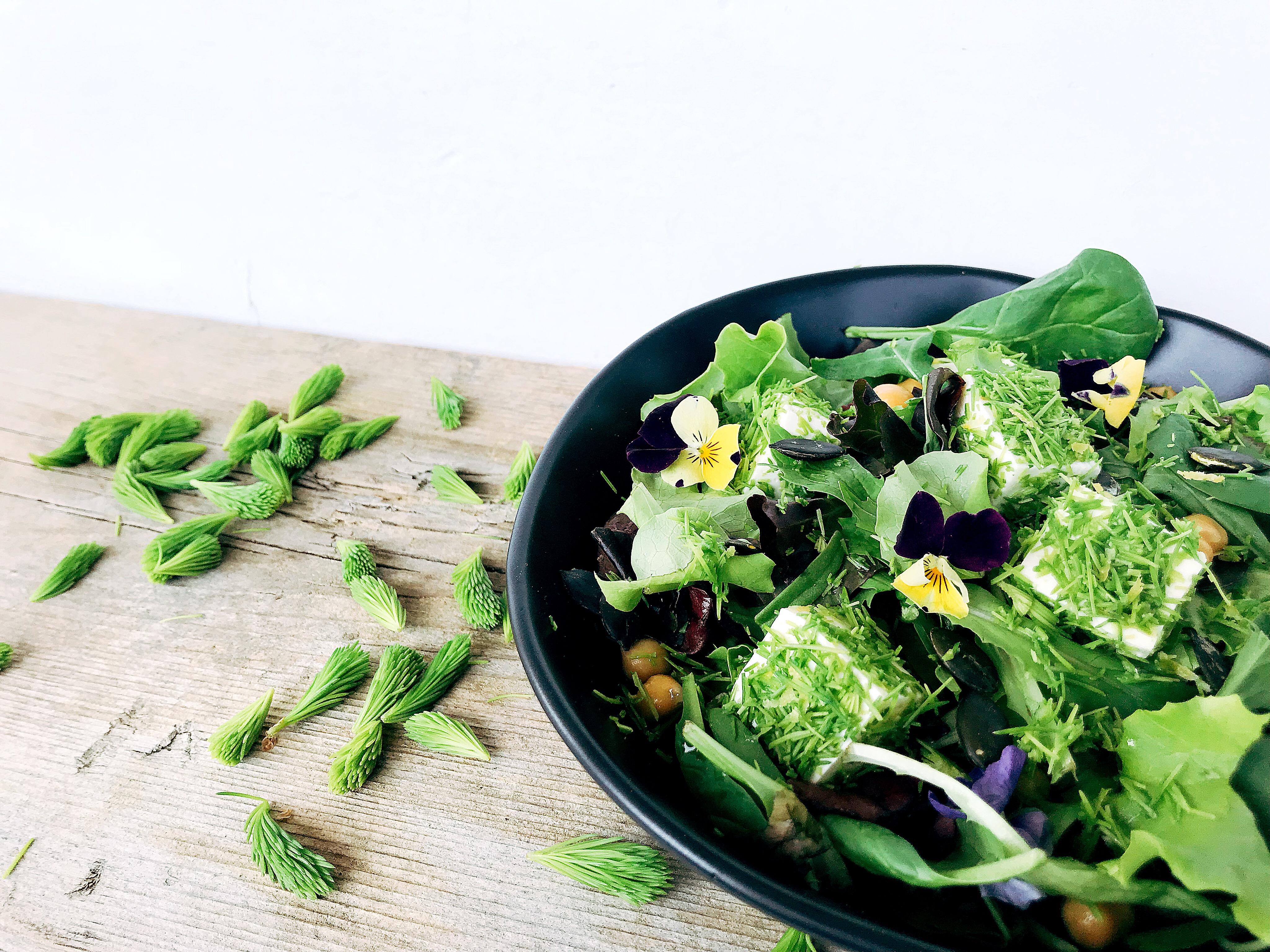 Feta im Maiwipfelmantel auf Frühlingskräutersalat